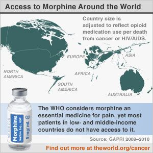 Access to Pain Medication around the World